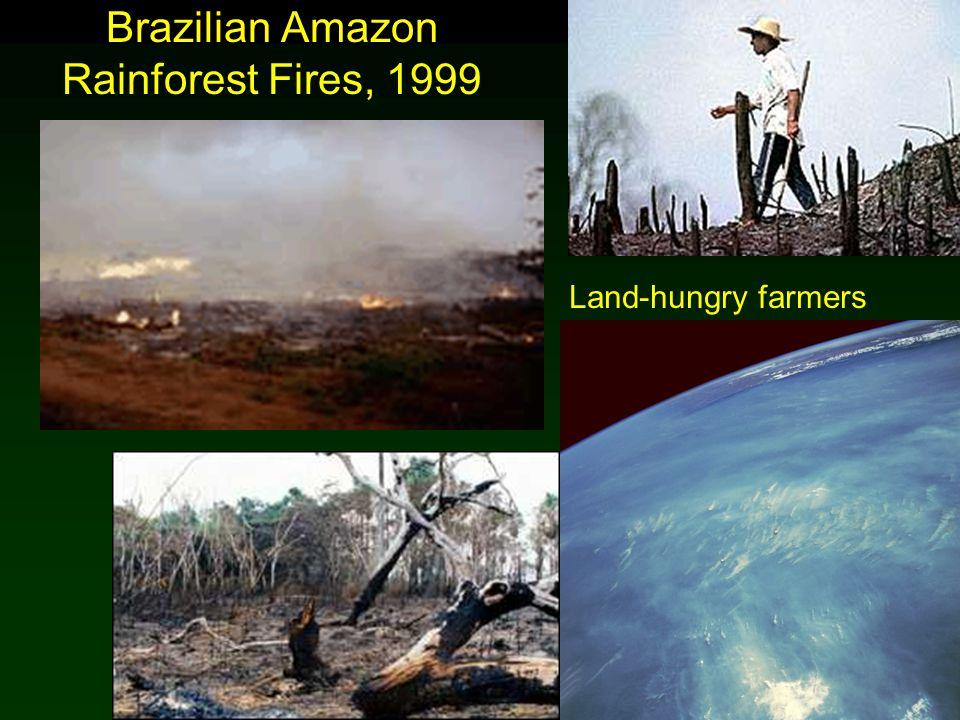 Cunningham - Cunningham - Saigo: Environmental Science 7 th Ed. Brazilian Amazon Rainforest Fires, 1999 Land-hungry farmers