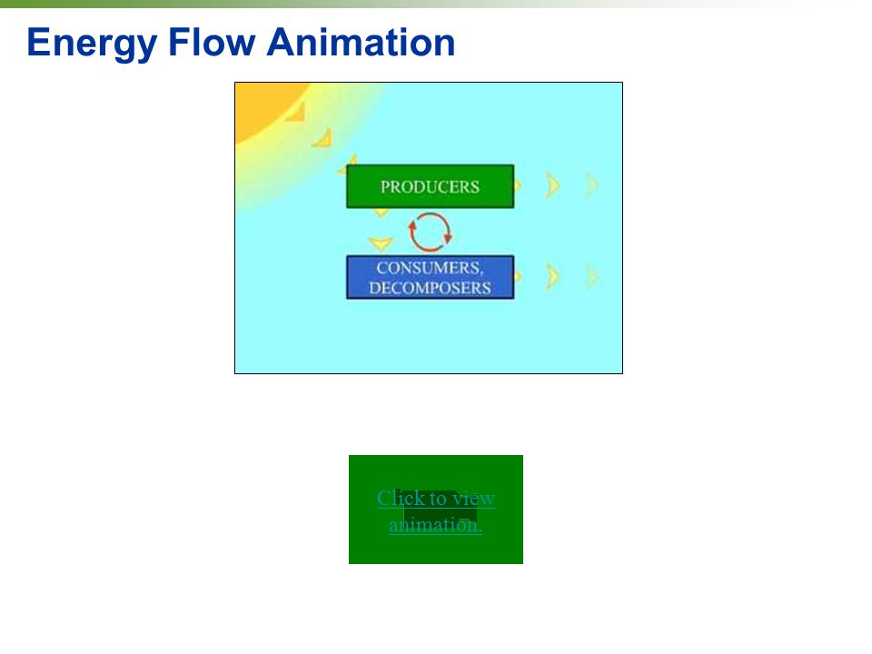Energy Flow Animation Click to view animation.