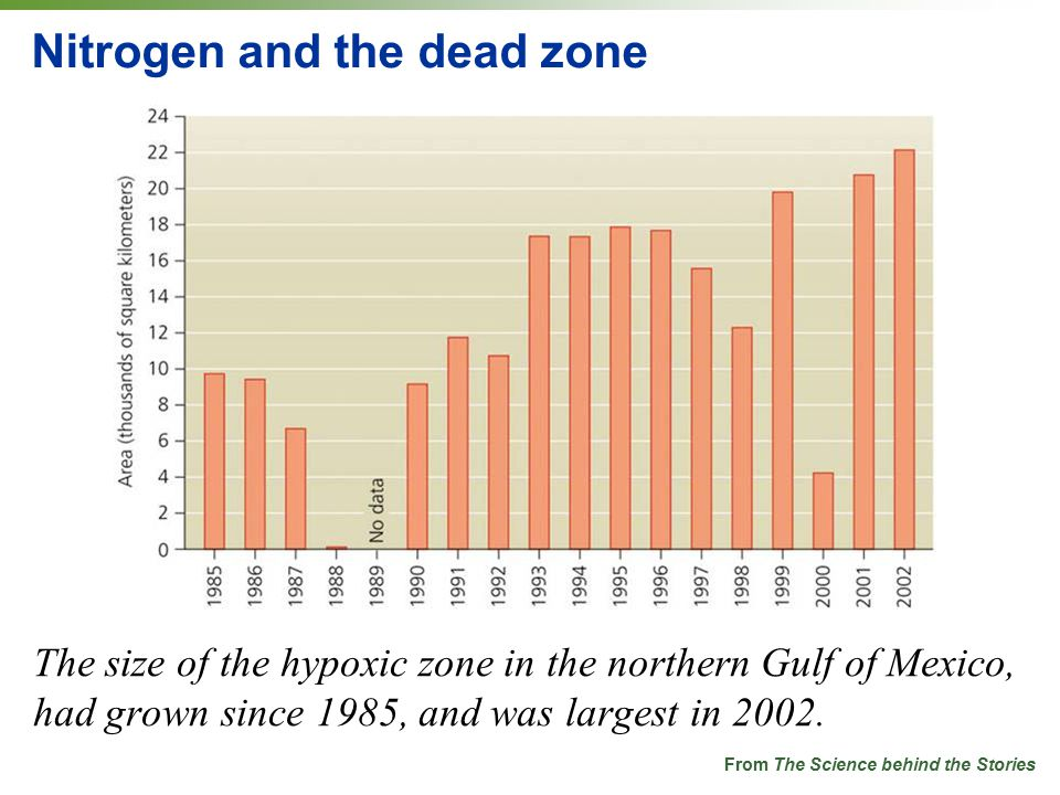 Nitrogen and the dead zone The size of the hypoxic zone in the northern Gulf of Mexico, had grown since 1985, and was largest in 2002.