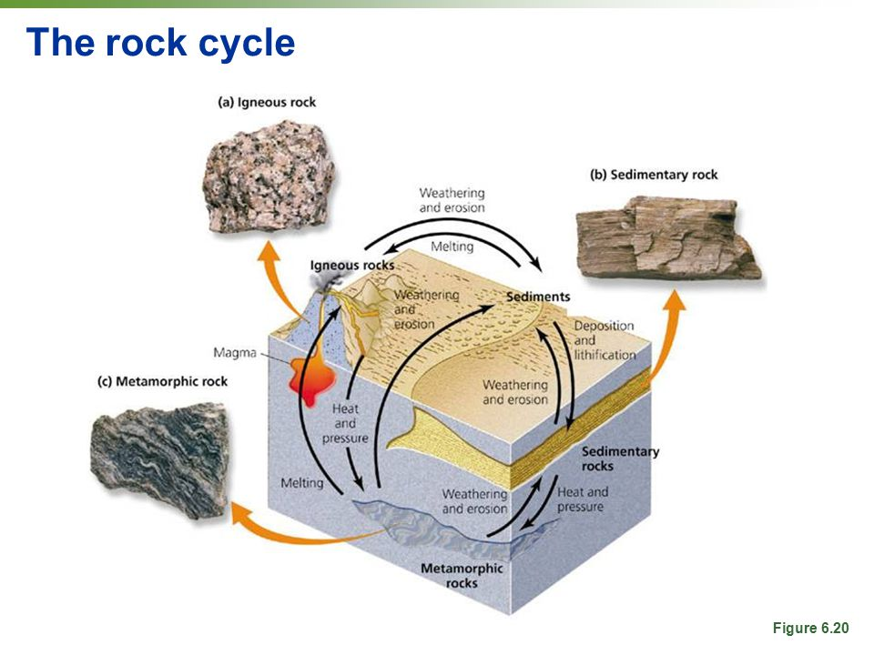 The rock cycle Figure 6.20