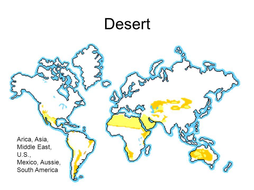 Desert Australia Cali Morocco Tunisia
