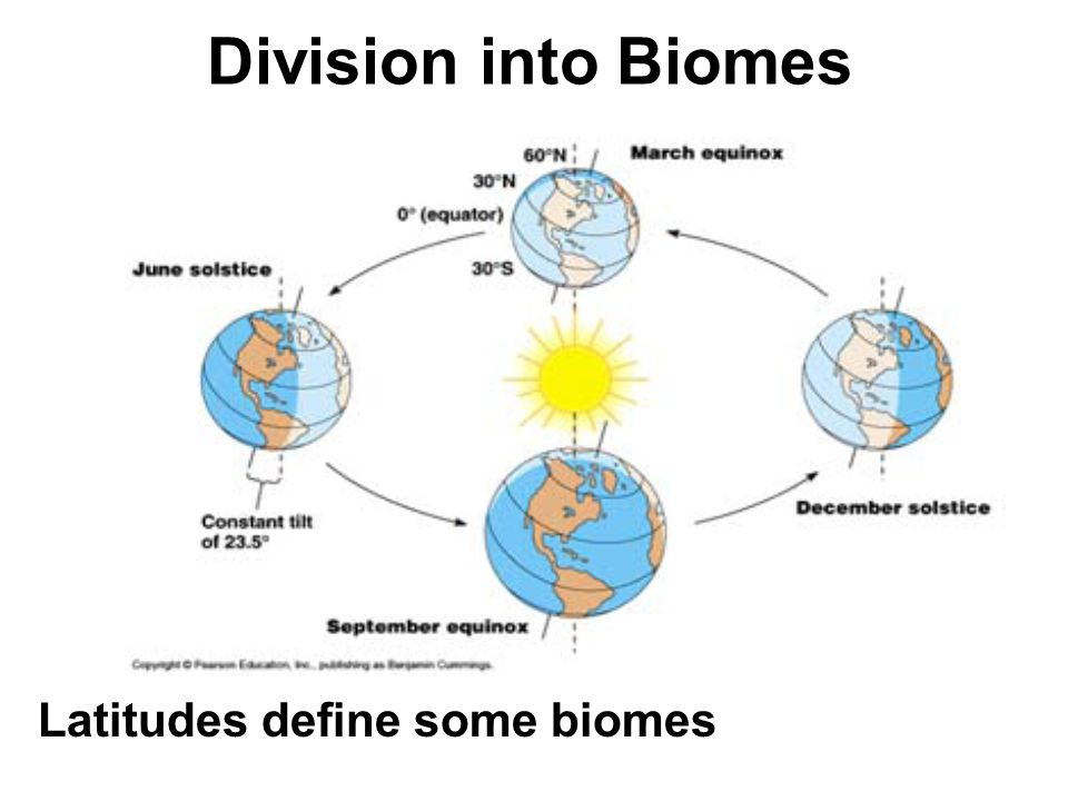 Biomes Earth can be divided into Biomes