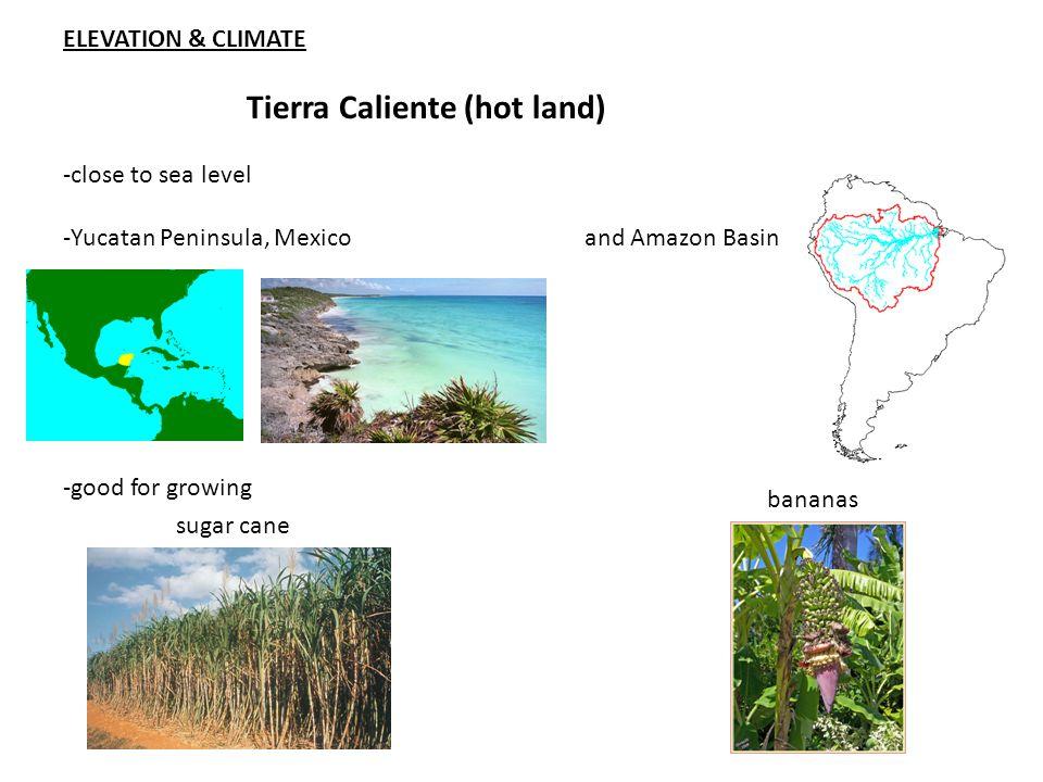 ELEVATION & CLIMATE Tierra Caliente (hot land) -close to sea level -Yucatan Peninsula, Mexico and Amazon Basin -good for growing sugar cane bananas