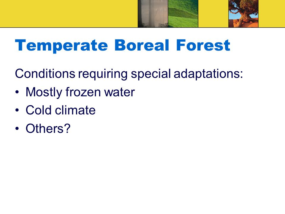 Temperate Boreal Forest Conditions requiring special adaptations: Mostly frozen water Cold climate Others