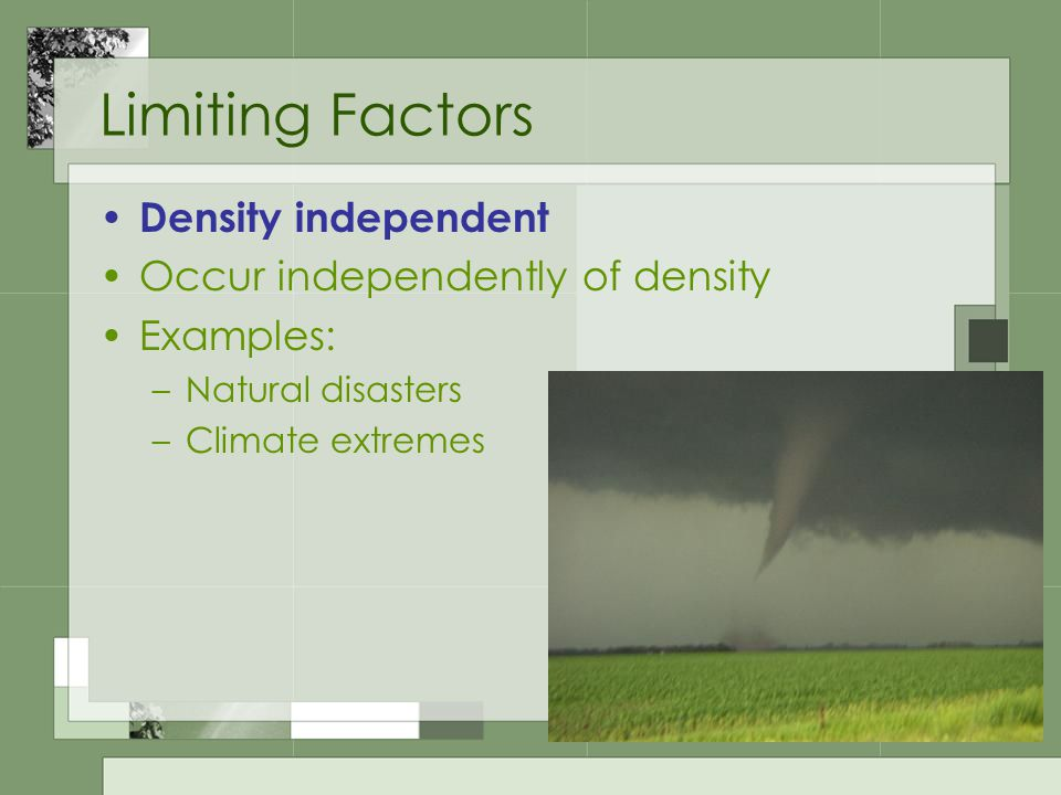 Limiting Factors Density independent Occur independently of density Examples: –Natural disasters –Climate extremes