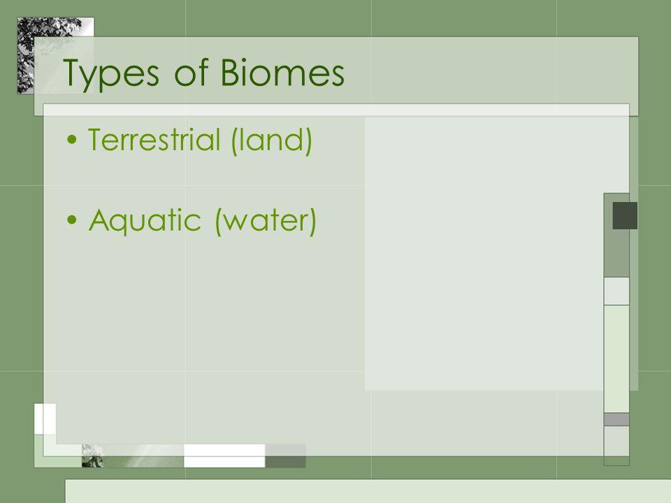 http://www.tropical-islad.de/KCH%20Sarawak%20-%20Bako%20National%20Park%20- %20Tropical%20rainforest2%201_b.jpg Which Biome is it?