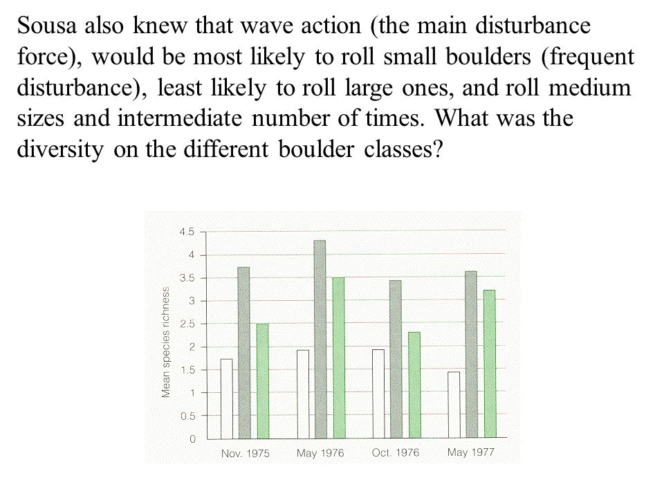 Sousa also knew that wave action (the main disturbance force), would be most likely to roll small boulders (frequent disturbance), least likely to rol