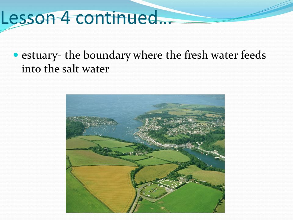 Lesson 4 continued… estuary- the boundary where the fresh water feeds into the salt water