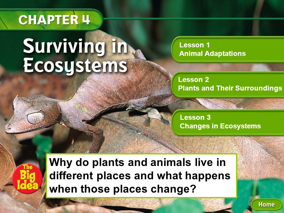 Why do plants and animals live in different places and what happens when those places change.