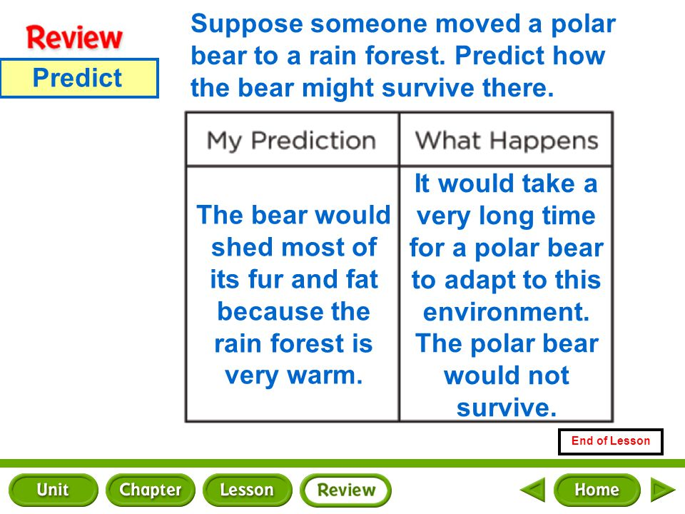 Problem and Solution End of Lesson How could you show that plants respond to changing temperatures.