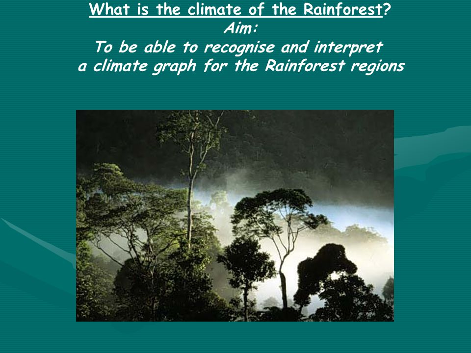 What is the climate of the Rainforest? Aim: To be able to recognise and interpret a climate graph for the Rainforest regions