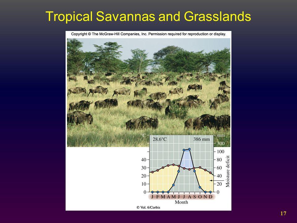 17 Tropical Savannas and Grasslands