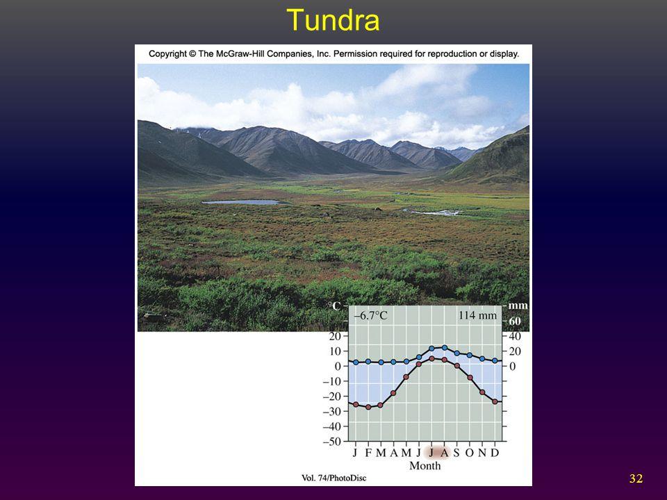 32 Tundra
