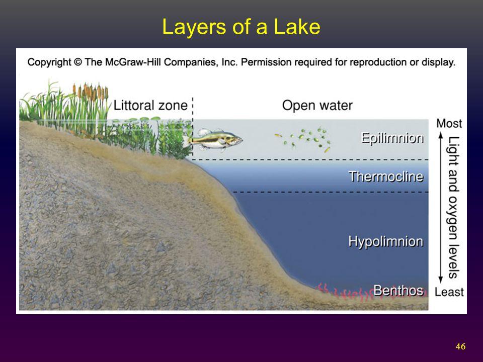 46 Layers of a Lake