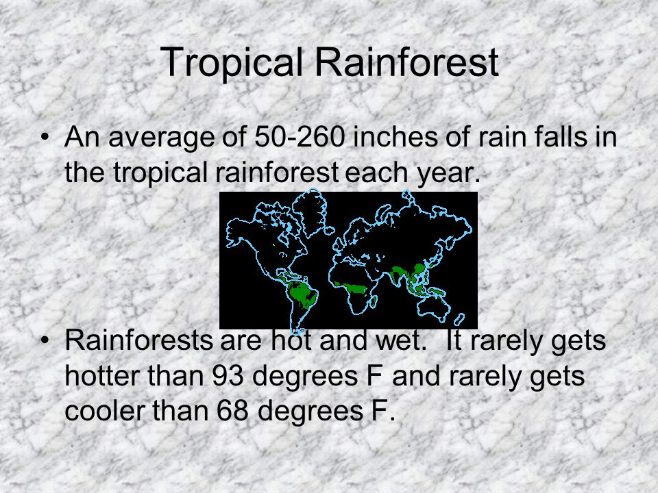 Tropical Rainforest An average of 50-260 inches of rain falls in the tropical rainforest each year. Rainforests are hot and wet. It rarely gets hotter