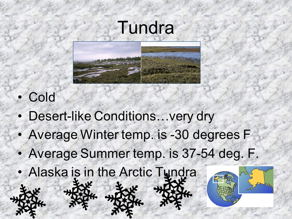 Tundra Cold Desert-like Conditions…very dry Average Winter temp. is -30 degrees F Average Summer temp. is 37-54 deg. F. Alaska is in the Arctic Tundra