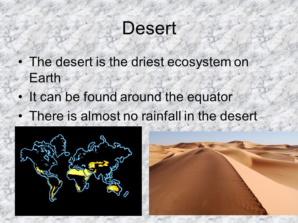 Desert The desert is the driest ecosystem on Earth It can be found around the equator There is almost no rainfall in the desert