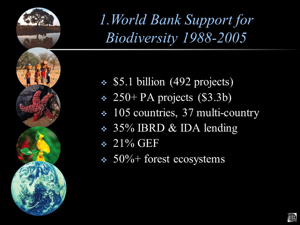  $5.1 billion (492 projects)  250+ PA projects ($3.3b)  105 countries, 37 multi-country  35% IBRD & IDA lending  21% GEF  50%+ forest ecosystems 1.World Bank Support for Biodiversity 1988-2005
