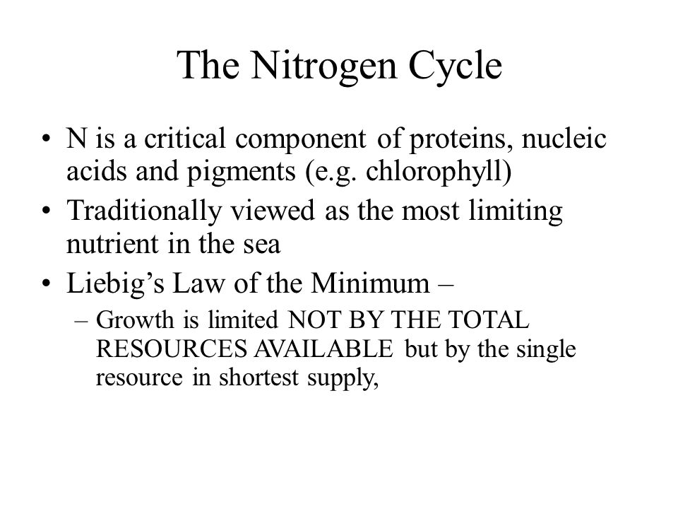 The Nitrogen Cycle N is a critical component of proteins, nucleic acids and pigments (e.g.
