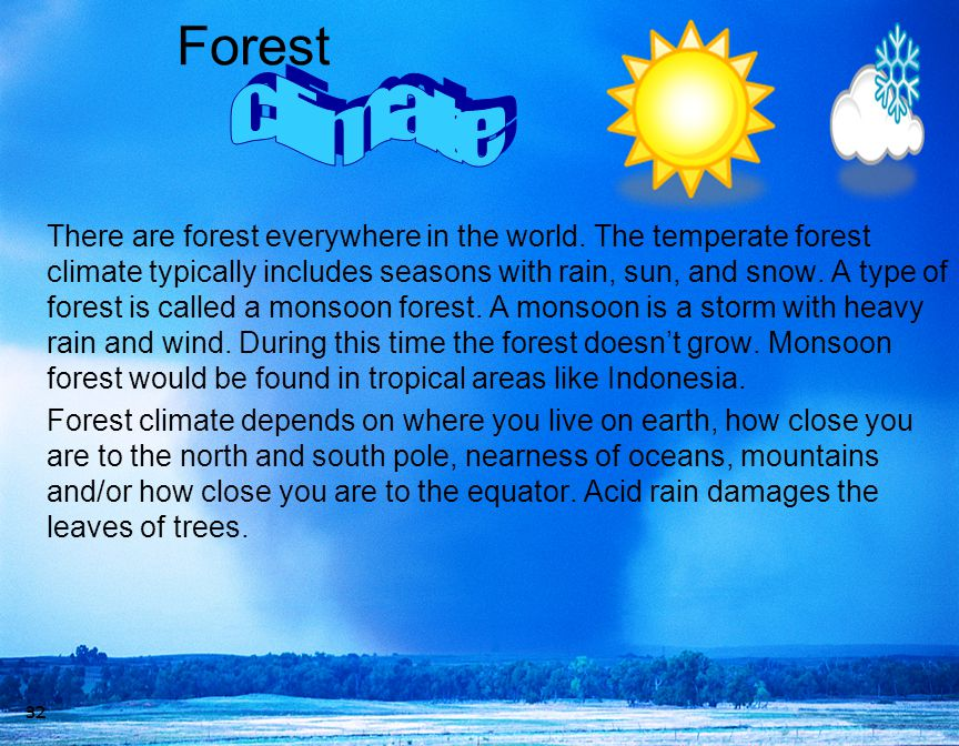 Forest There are forest everywhere in the world. The temperate forest climate typically includes seasons with rain, sun, and snow. A type of forest is