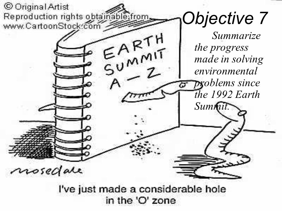 Objective 7 Summarize the progress made in solving environmental problems since the 1992 Earth Summit.