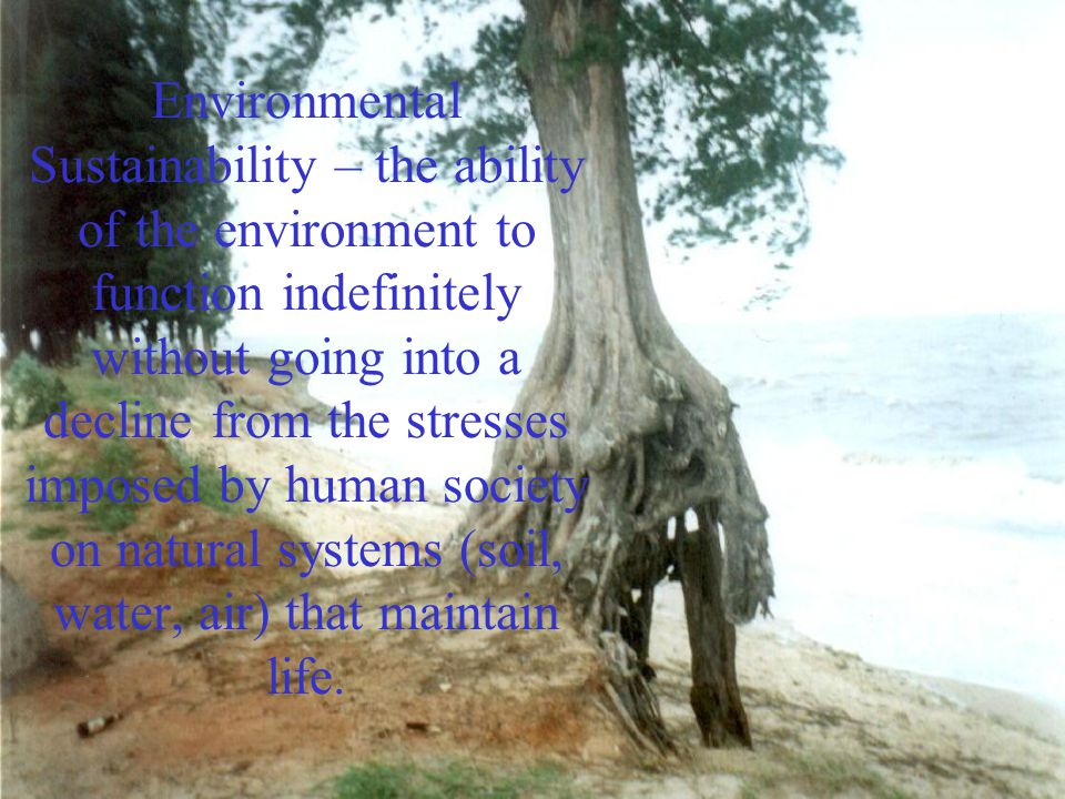 Environmental Sustainability – the ability of the environment to function indefinitely without going into a decline from the stresses imposed by human society on natural systems (soil, water, air) that maintain life.