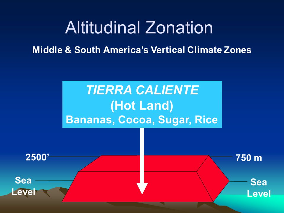 Sea Level Sea Level 2500' 750 m TIERRA CALIENTE (Hot Land) Bananas, Cocoa, Sugar, Rice Altitudinal Zonation Middle & South America's Vertical Climate