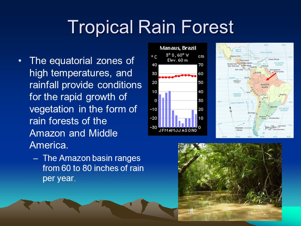 Tropical Rain Forest The equatorial zones of high temperatures, and rainfall provide conditions for the rapid growth of vegetation in the form of rain