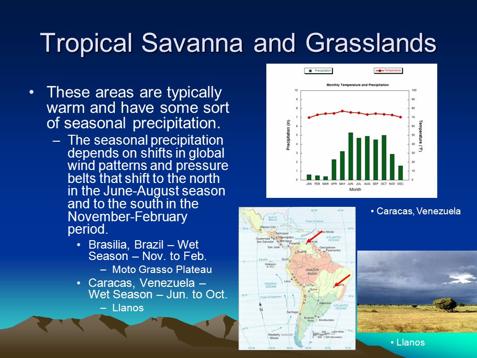 Tropical Savanna and Grasslands These areas are typically warm and have some sort of seasonal precipitation. –The seasonal precipitation depends on sh