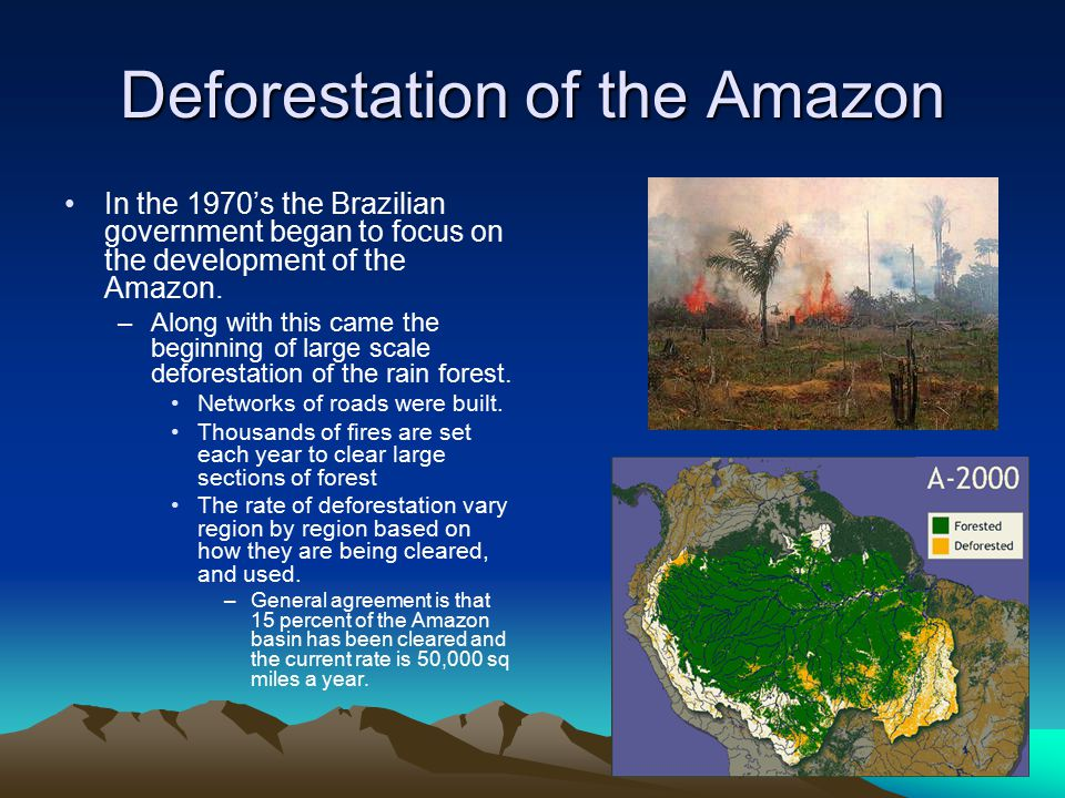 Deforestation of the Amazon In the 1970's the Brazilian government began to focus on the development of the Amazon. –Along with this came the beginnin