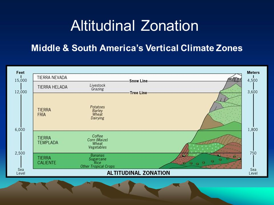 Sea Level Sea Level 2500' 750 m TIERRA CALIENTE (Hot Land) Bananas, Cocoa, Sugar, Rice Altitudinal Zonation Middle & South America's Vertical Climate Zones