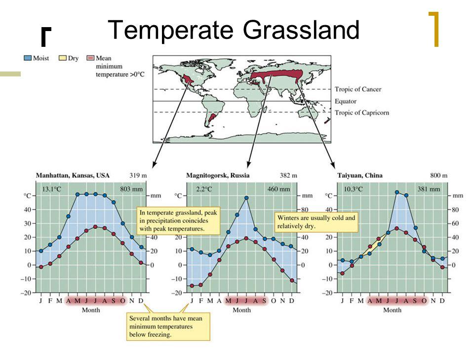 25 Temperate Grassland