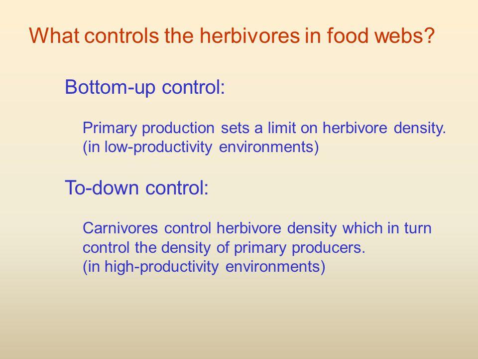 What controls the herbivores in food webs.