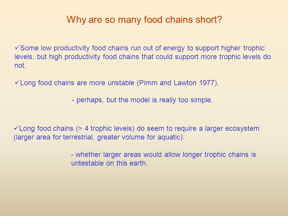 Why are so many food chains short.