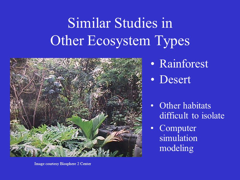 Similar Studies in Other Ecosystem Types Rainforest Desert Other habitats difficult to isolate Computer simulation modeling Image courtesy Biosphere 2