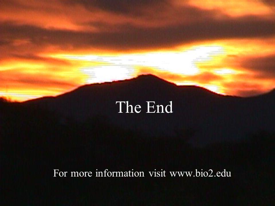 The End For more information visit www.bio2.edu