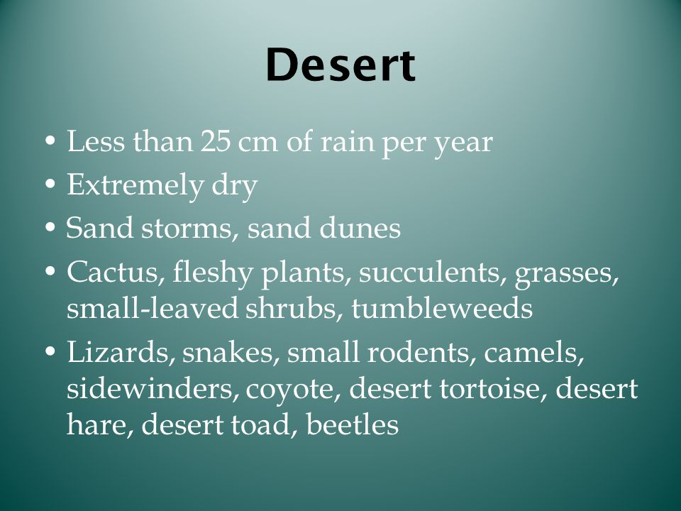 Desert Less than 25 cm of rain per year Extremely dry Sand storms, sand dunes Cactus, fleshy plants, succulents, grasses, small-leaved shrubs, tumblew