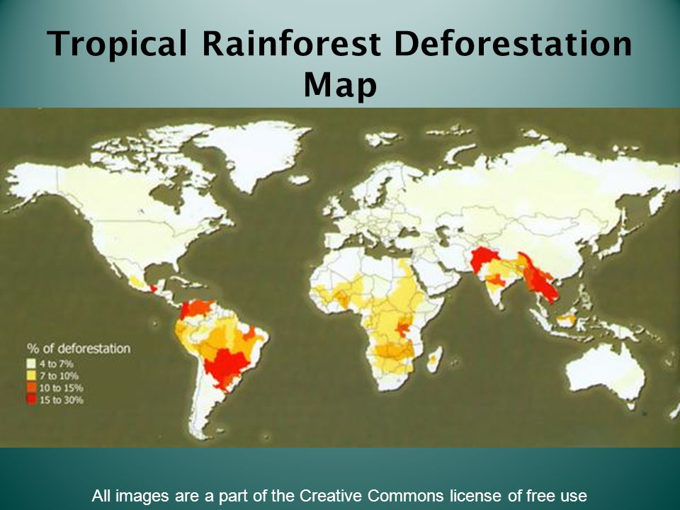 Tropical Rainforest Deforestation Map All images are a part of the Creative Commons license of free use
