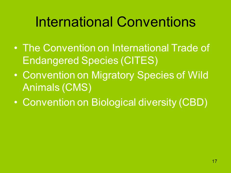 International Conventions The Convention on International Trade of Endangered Species (CITES) Convention on Migratory Species of Wild Animals (CMS) Convention on Biological diversity (CBD) 17