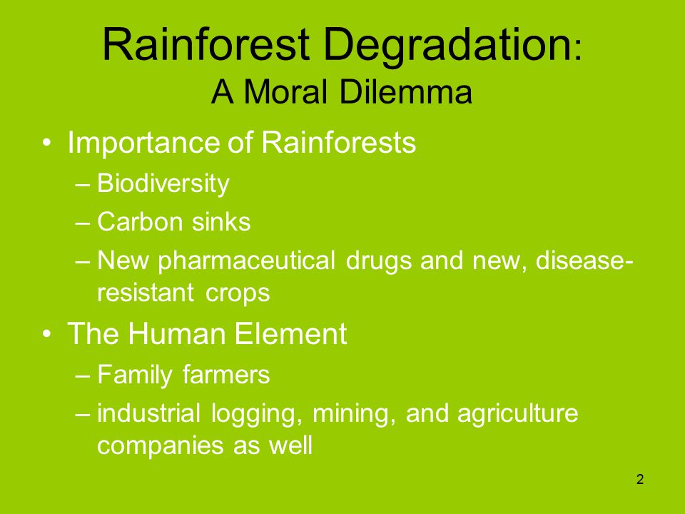 Rainforest Degradation : A Moral Dilemma Importance of Rainforests –Biodiversity –Carbon sinks –New pharmaceutical drugs and new, disease- resistant crops The Human Element –Family farmers –industrial logging, mining, and agriculture companies as well 2