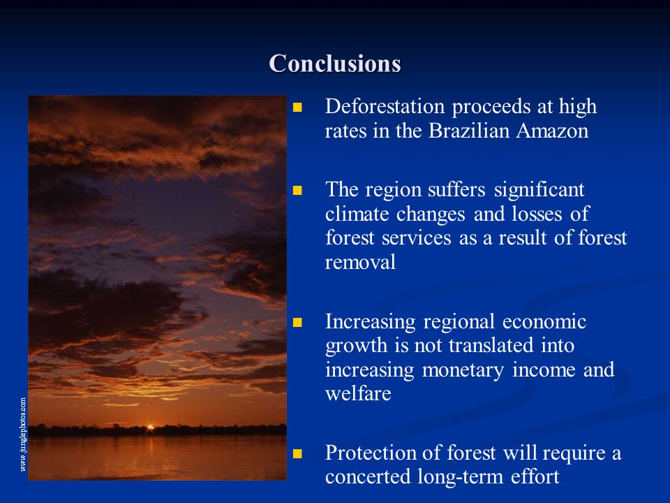 Conclusions Deforestation proceeds at high rates in the Brazilian Amazon The region suffers significant climate changes and losses of forest services as a result of forest removal Increasing regional economic growth is not translated into increasing monetary income and welfare Protection of forest will require a concerted long-term effort www.junglephotos.com
