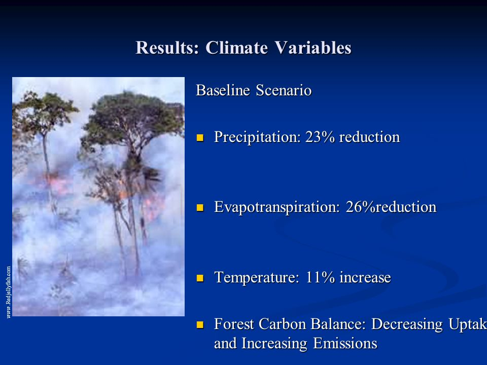 Results: Climate Variables Baseline Scenario Precipitation: 23% reduction Evapotranspiration: 26%reduction Temperature: 11% increase Forest Carbon Balance: Decreasing Uptake and Increasing Emissions www.Redjellyfish.com