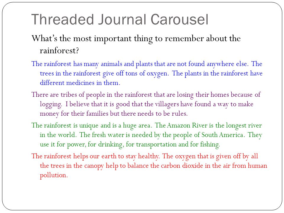 Threaded Journal Carousel What's the most important thing to remember about the rainforest.