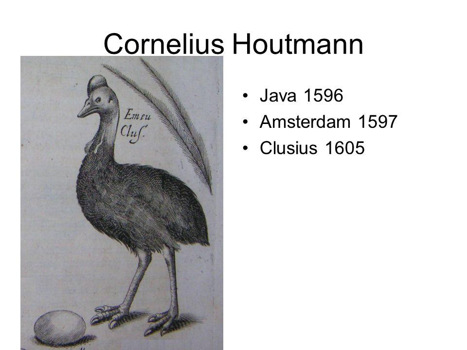 Cornelius Houtmann Java 1596 Amsterdam 1597 Clusius 1605