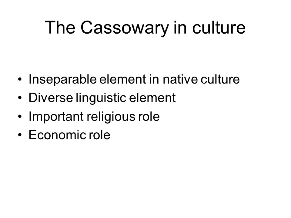 The Cassowary in culture Inseparable element in native culture Diverse linguistic element Important religious role Economic role