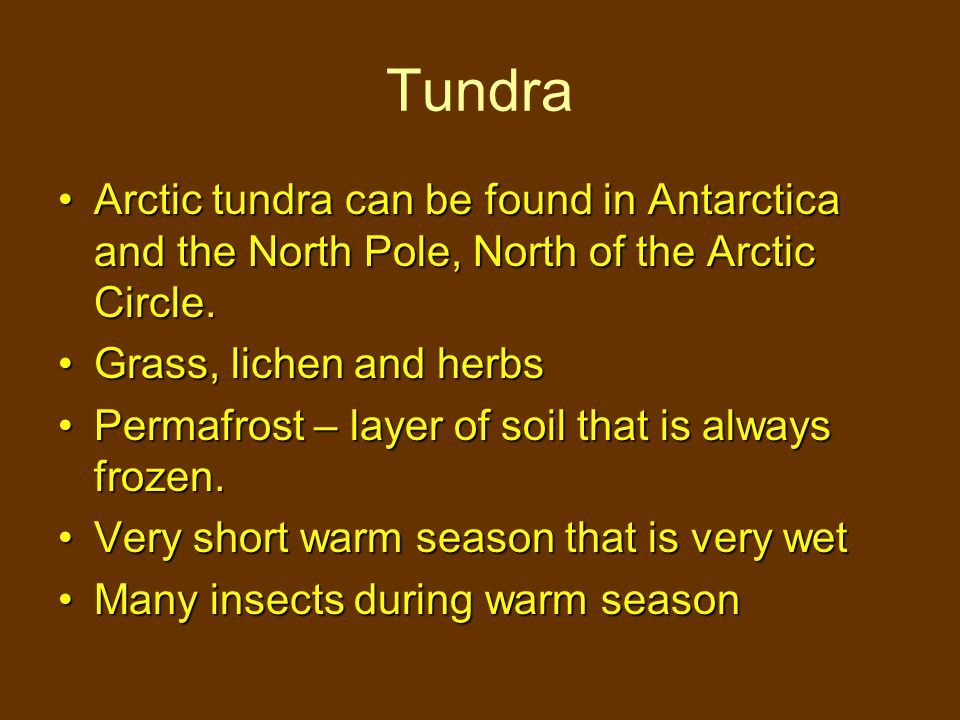 Arctic tundra can be found in Antarctica and the North Pole, North of the Arctic Circle.Arctic tundra can be found in Antarctica and the North Pole, North of the Arctic Circle.