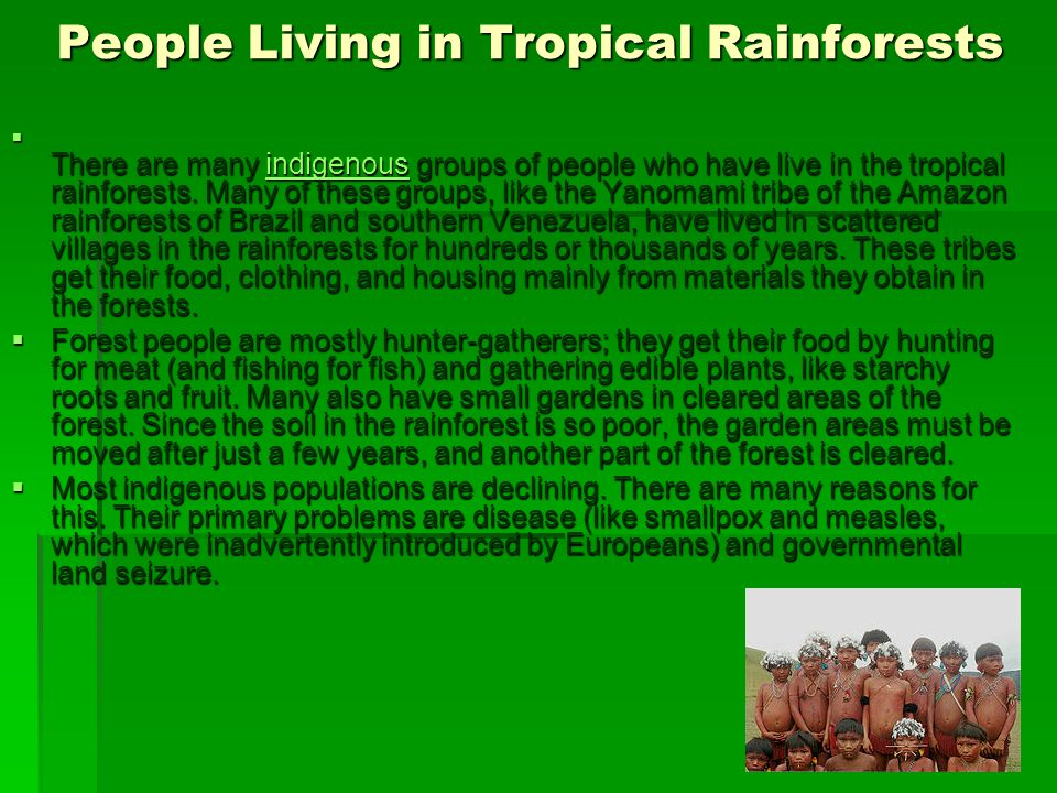 People Living in Tropical Rainforests  There are many indigenous groups of people who have live in the tropical rainforests. Many of these groups, li