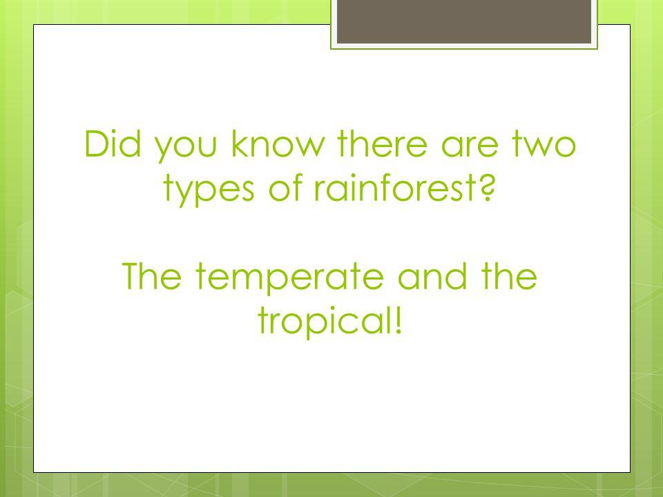  Tropical rainforests are found close to the equator.