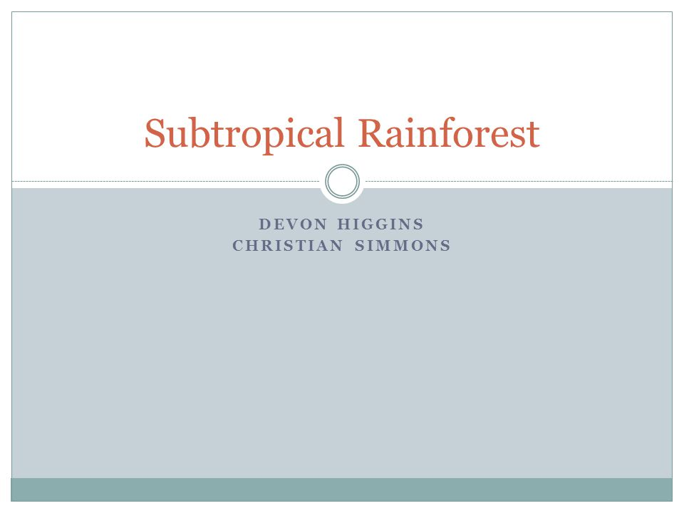DEVON HIGGINS CHRISTIAN SIMMONS Subtropical Rainforest