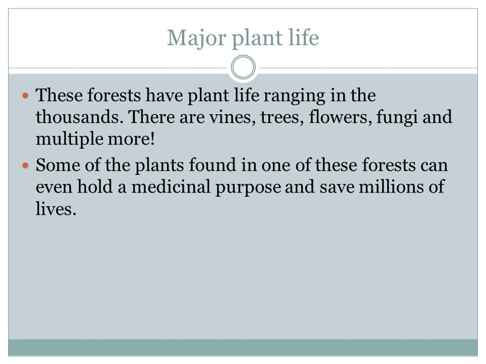 Examples of Animals In a tropical rainforest, there are thousands of types of animals.